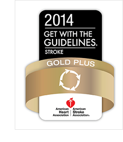 Get With The Guidelines®—Stroke Gold Plus Quality Achievement Award